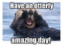 Have an otterly